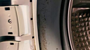 El truco para eliminar el mal olor y el moho de la goma de tu lavadora