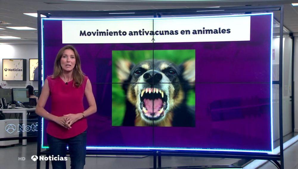 El movimiento antivacuna se extiende a los animales