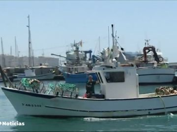 La presencia de la bacteria e. coli obliga al cierre de un caladero de marisco en Málaga