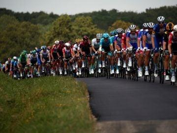 El pelotón durante la 7ª etapa de la 106ª edición de la carrera ciclista Tour de Francia