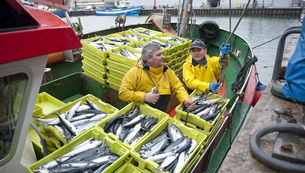 El pescado es la causa de este resultado, según un estudio