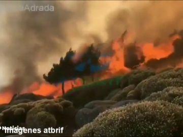 REEMPLAZO | Continúa activo el incendio de Ávila con un perímetro de 180 hectáreas