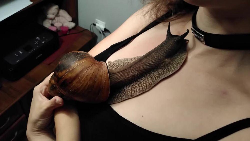 Una mujer tiene un caracol gigante como mascota y deja que se arrastre por todo su cuerpo