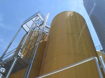 De la cocción al envasado, así es el proceso de elaboración de la cerveza