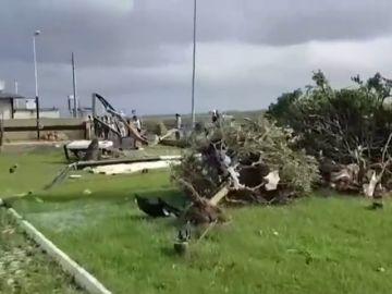 Una fallecida en un tornado en Roma