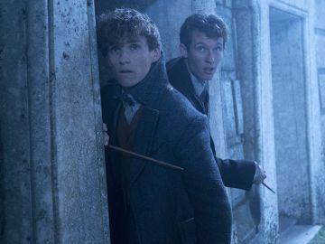 Newt Scamander y Theseus en 'Animales Fantásticos: Los crímenes de Grindelwald'