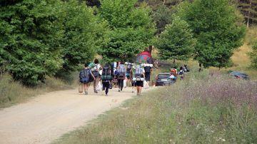 Campamentos de verano