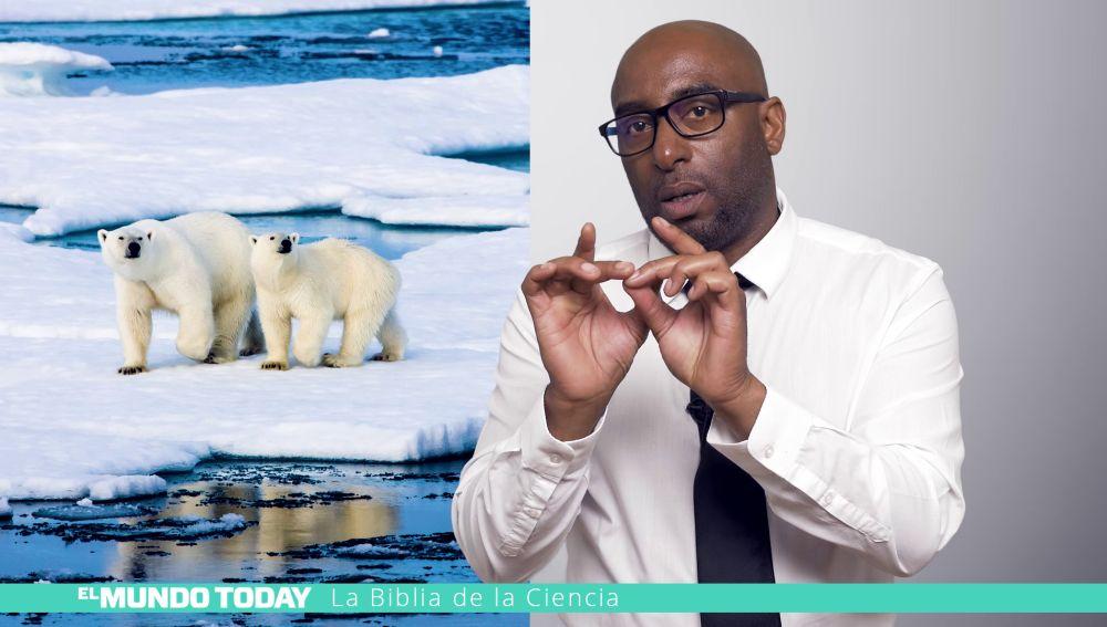 Causante del deshielo del Ártico