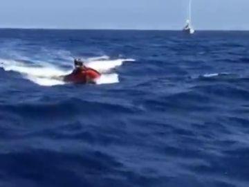 Los delfines escoltan al 'Astral', el barco que salva a los refugiados del Mediterráneo