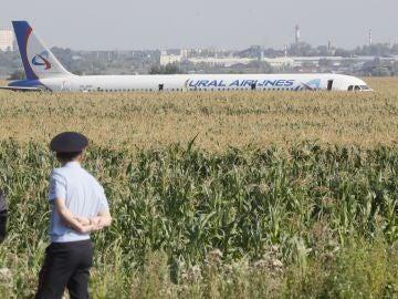Un Airbus 321 aterriza de panza en un campo de maíz en las afueras de Moscú