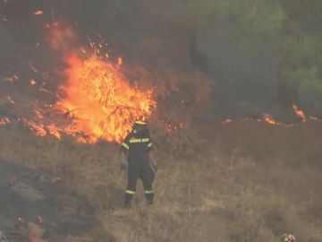 Los bomberos continúan luchando por extinguir el incendio en la isla griega de Eubea