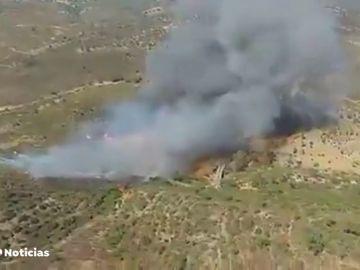 Desalojadas 40 persona por un incendio forestal en El Madroño, en Sevilla