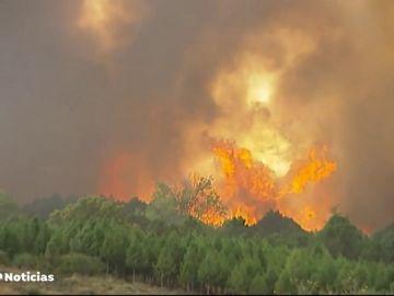 ¿Cómo trabajan los encargados de investigar las causas de los incendios?