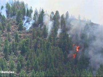 El viento y el calor vuelven a reactivar la alerta por incendios en Canarias