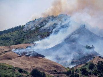 Incendio en la isla de Gran Canaria