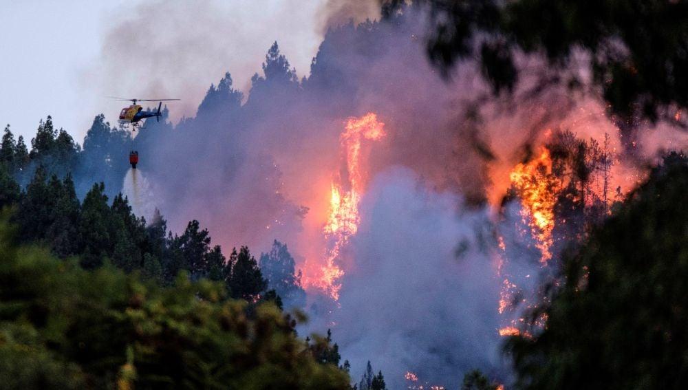 Un dispositivo de emergencia trabaja en la extinción de un incendio en el municipio de grancanario de Valleseco