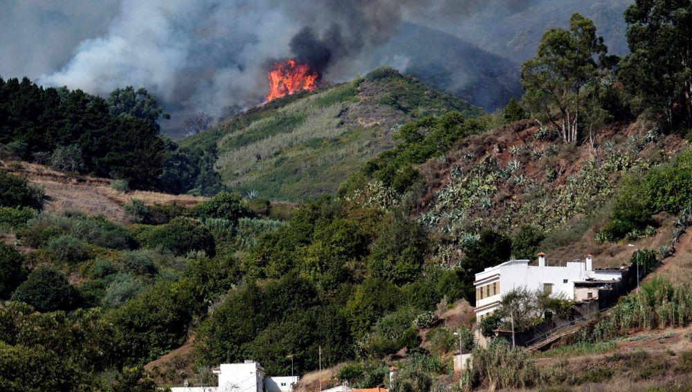 El incendio forestal que comenzó el sábado en la isla española de Gran Canaria