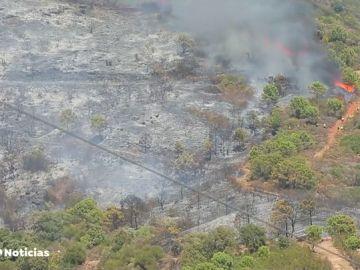 Unas 50 personas, evacuadas por el fuego en Estepona