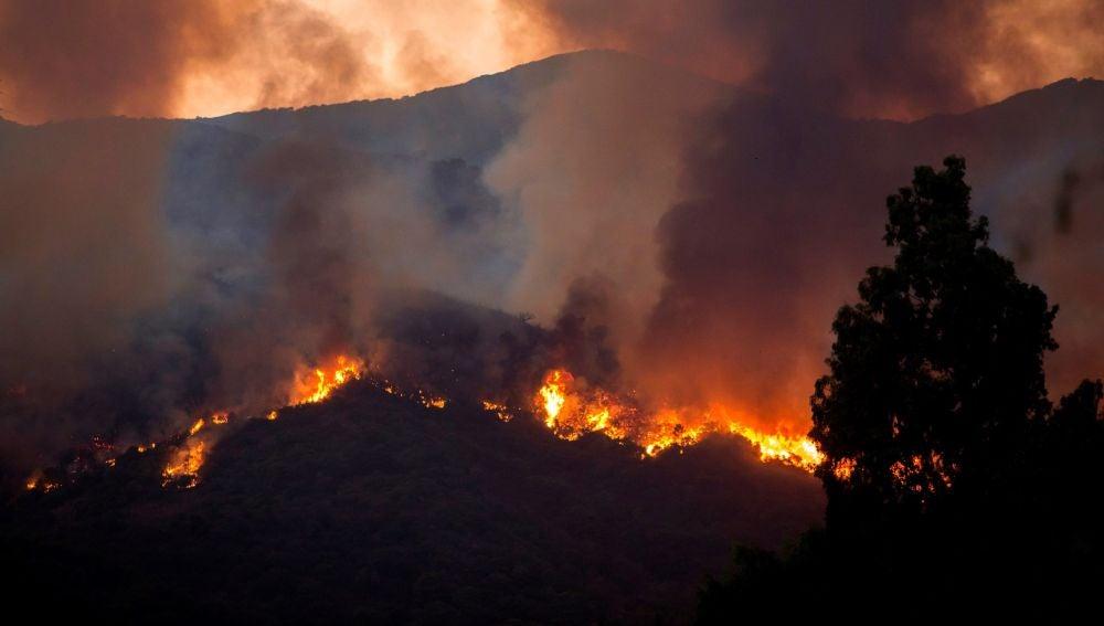 Incendio en Estepona
