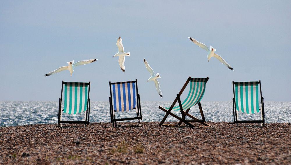 Varias tumbonas en una playa