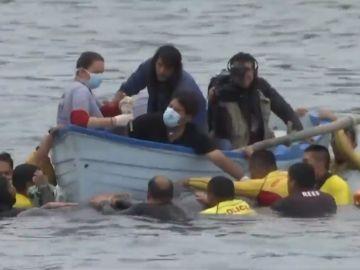 Decenas de personas trataron de rescatar a una ballena bebé en la costa de Perú