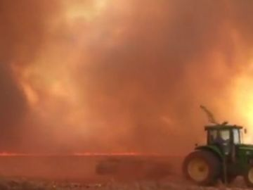 Brasil vive su peor oleada de incendios en cinco años