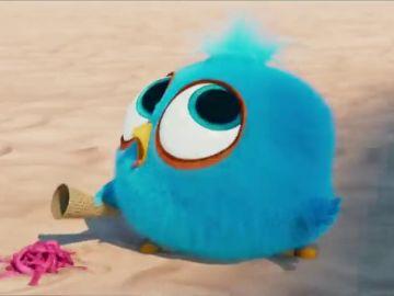 Estrenos de cine: Chicos Malos, Angry Birds 2 y Un infierno bajo el agua encabezan la cartelera de este fin de semana