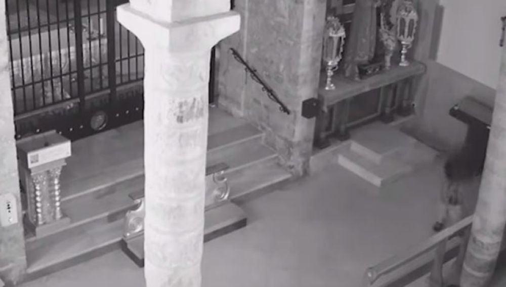 El acusado defecando en el santuario