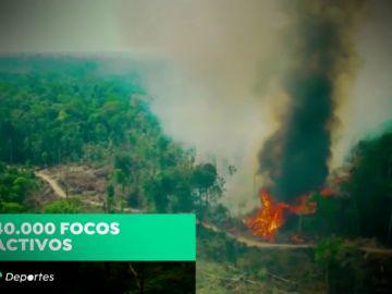 """""""Sensaciones de impotencia"""" ante el fuego en el Amazonas, el pulmón del mundo"""