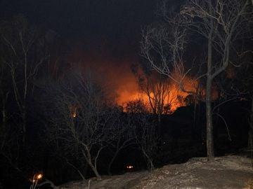 Imagen de la llamas producidas por el incendio forestal que afecta al paraje de la localidad sevillana de El Ronquillo