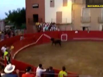 Susto monumental en las fiestas de Milagro al encaramarse un toro en la