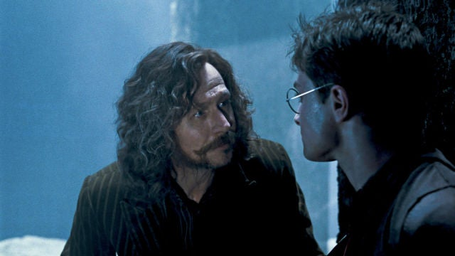 Sirius Black y Harry Potter