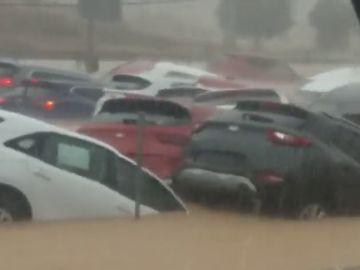 Decenas de coches, sepultados por el agua en Orihuela por los efectos de la DANA