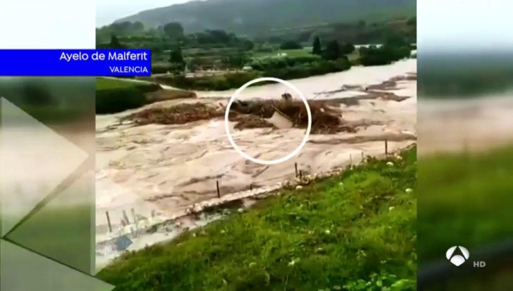 El Ayuntamiento de Ontinyent solicitará zona catastrófica y ya han evacuado a más de 100 personas en Archena