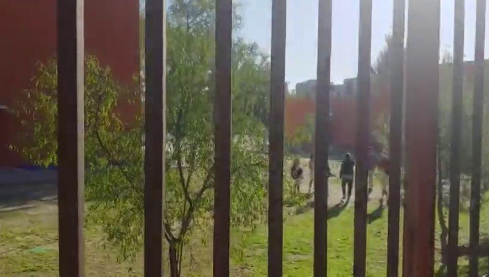 Graban y difunden la paliza a una niña de 14 años a las puertas de un instituto de San Blas (Madrid)