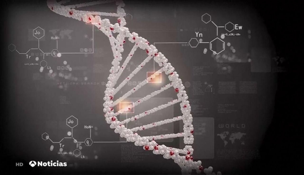 Desarrollan una nueva técnica que modifica el ADN con mucha precisión y evita enfermedades