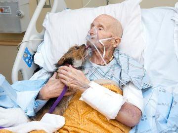 Un veterano de guerra se despide de su perro