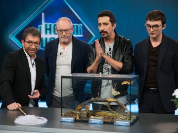 Los actores de 'Juego de Tronos' descubren la lengua de las mariposas en 'El Hormiguero 3.0'