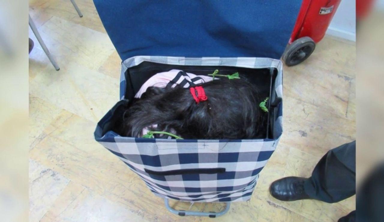Detenido al pasar a una niña escondida en un carro de la compra de Marruecos a Melilla
