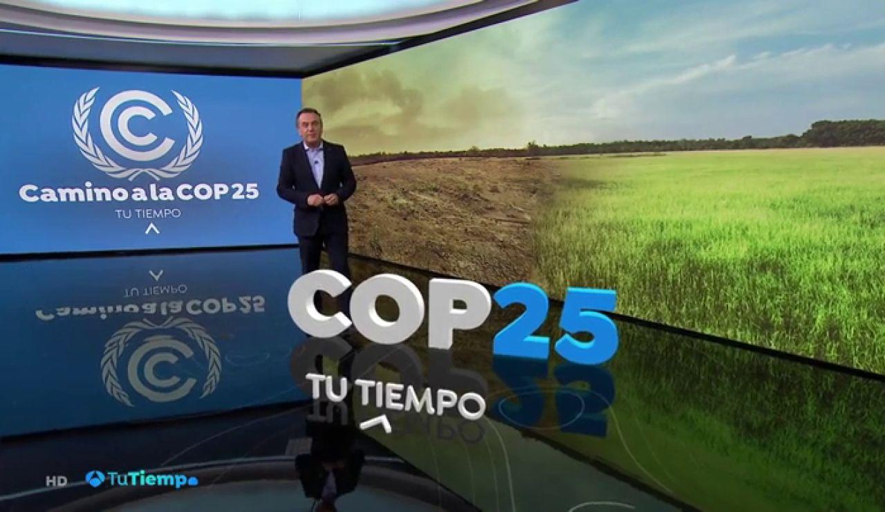 """Científicos de todo el mundo alertan de la llegada de una """"emergencia climática"""""""