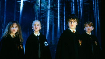 Hermione, Draco, Harry y Ron en 'Harry Potter'