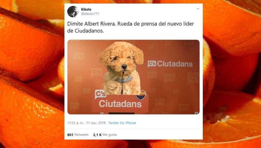 Memes Albert Rivera