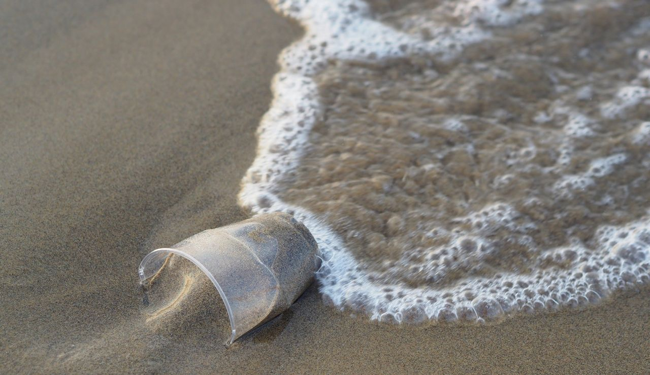 Vaso de plástico en la orilla