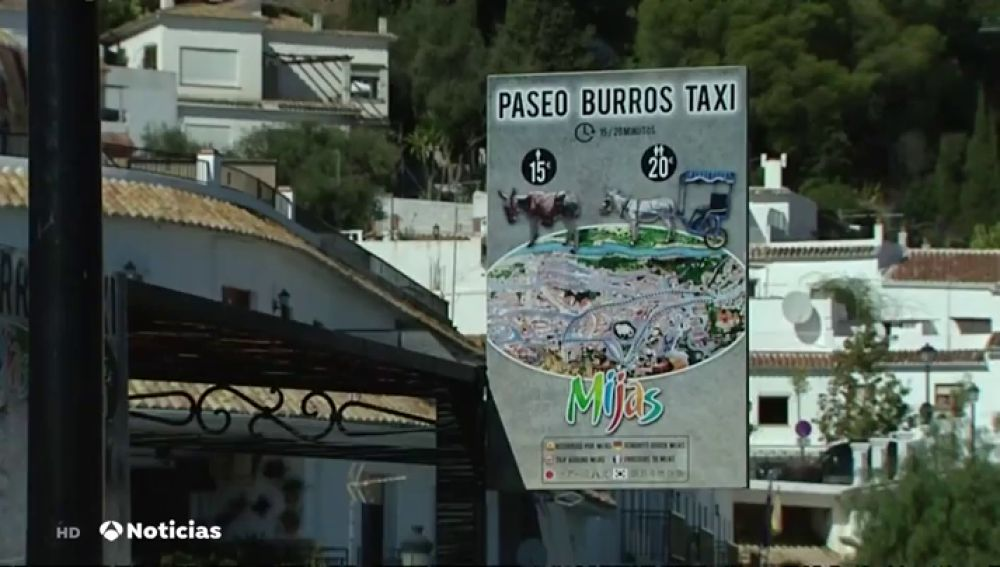 Paseo 'burros-taxi'