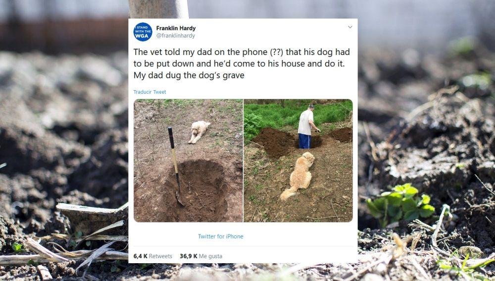 Tuit viral sobre el perro de su padre