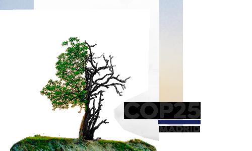 Fondo Cumbre cambio climático