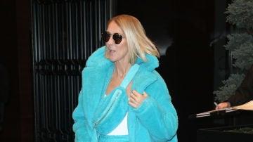 El indescriptible look de Céline Dion