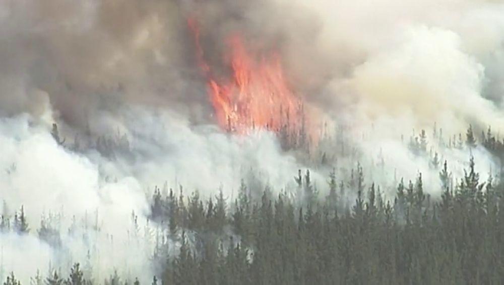 Los incendios en Australia dejan cuatro muertos y un millón de hectáreas calcinadas