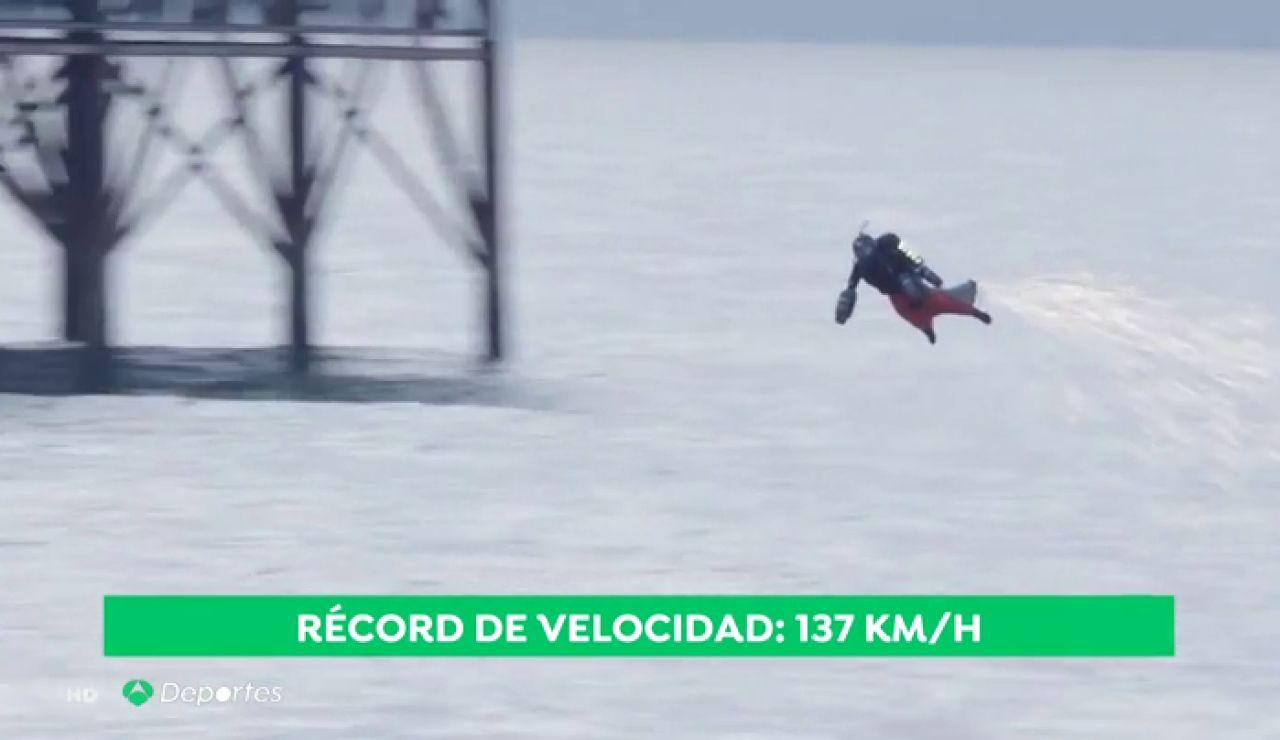 volador_pajaro