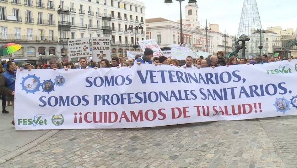 Los veterinarios se manifiestan en Madrid